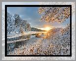 Rzeka, Zima, Wschód słońca, Ośnieżone, Drzewa