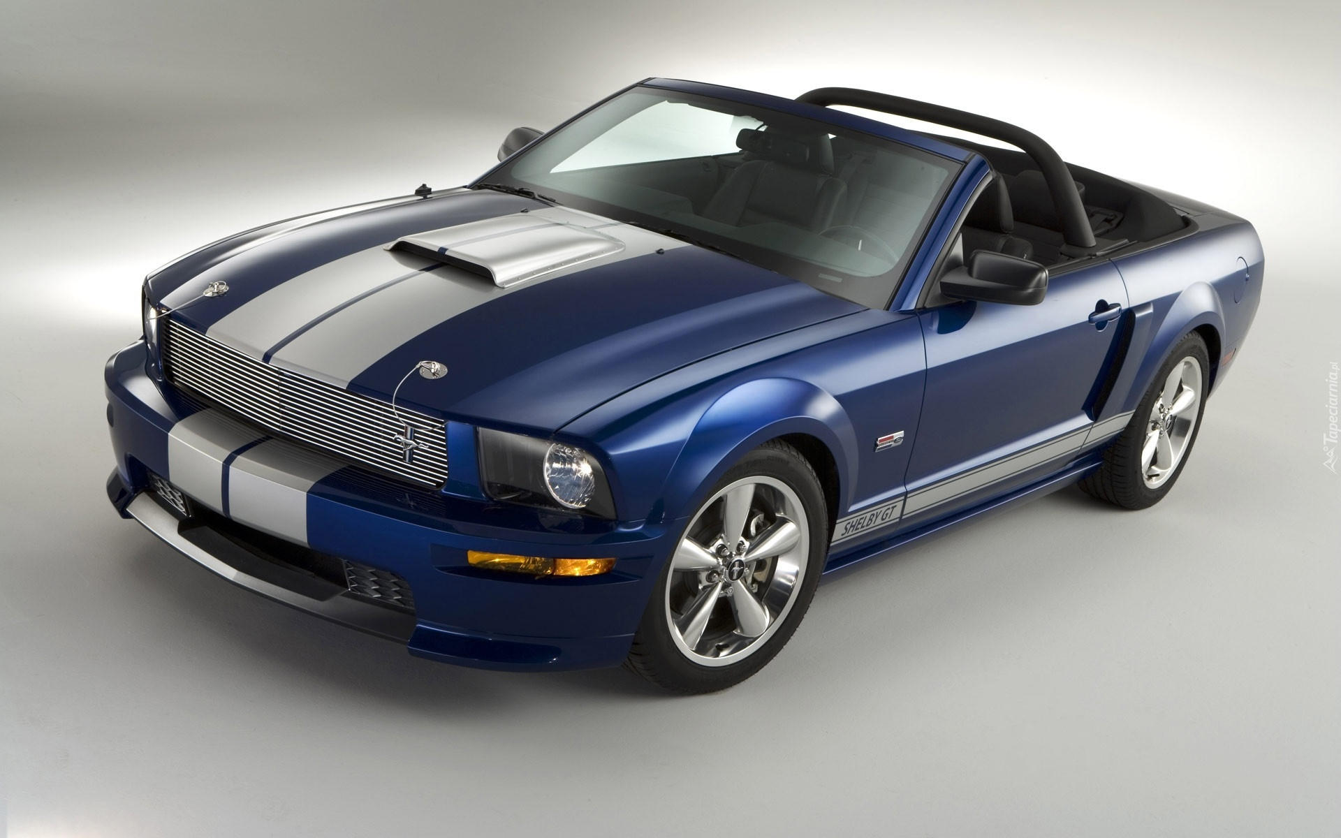ford mustang shelby gt cabrio. Black Bedroom Furniture Sets. Home Design Ideas