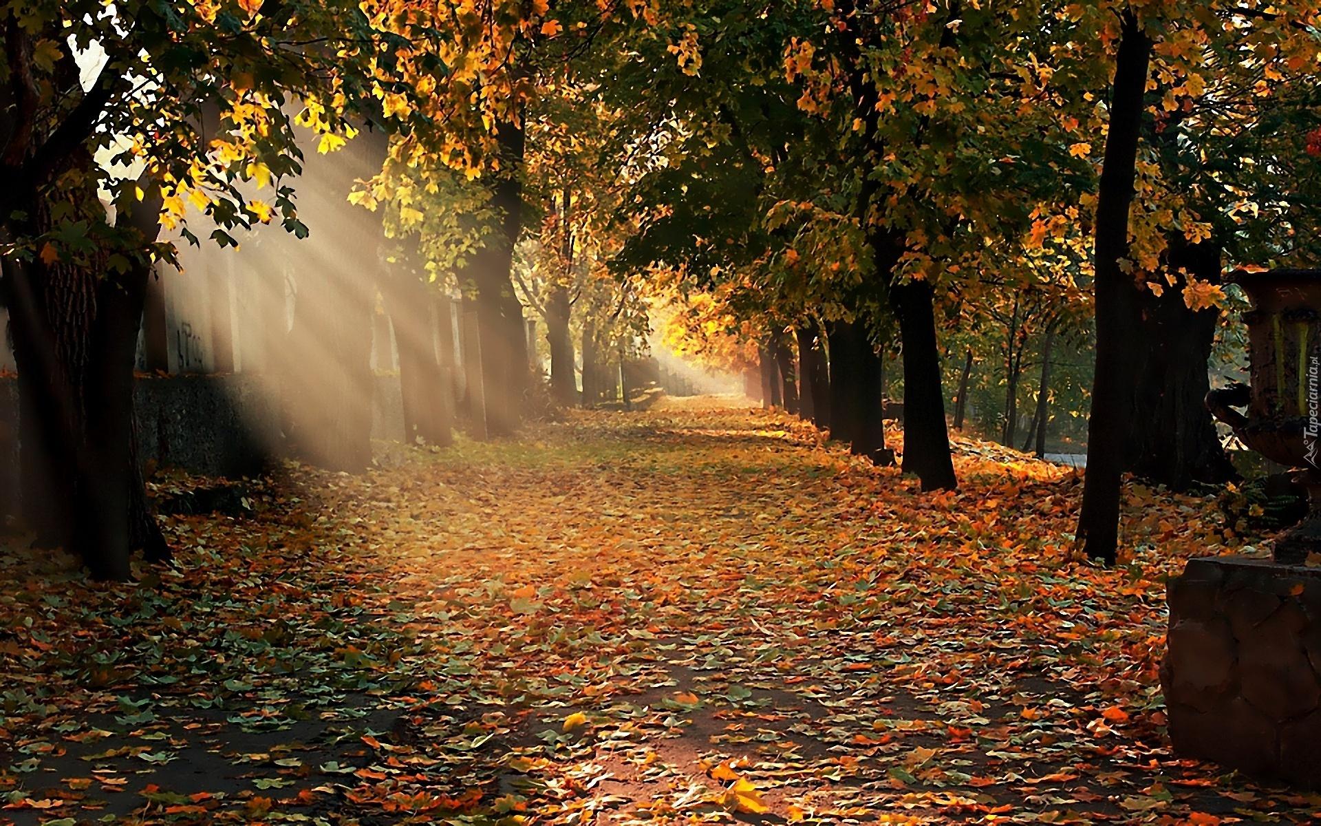 Самые красивые пейзажи фотографии Весенние фото пейзажи