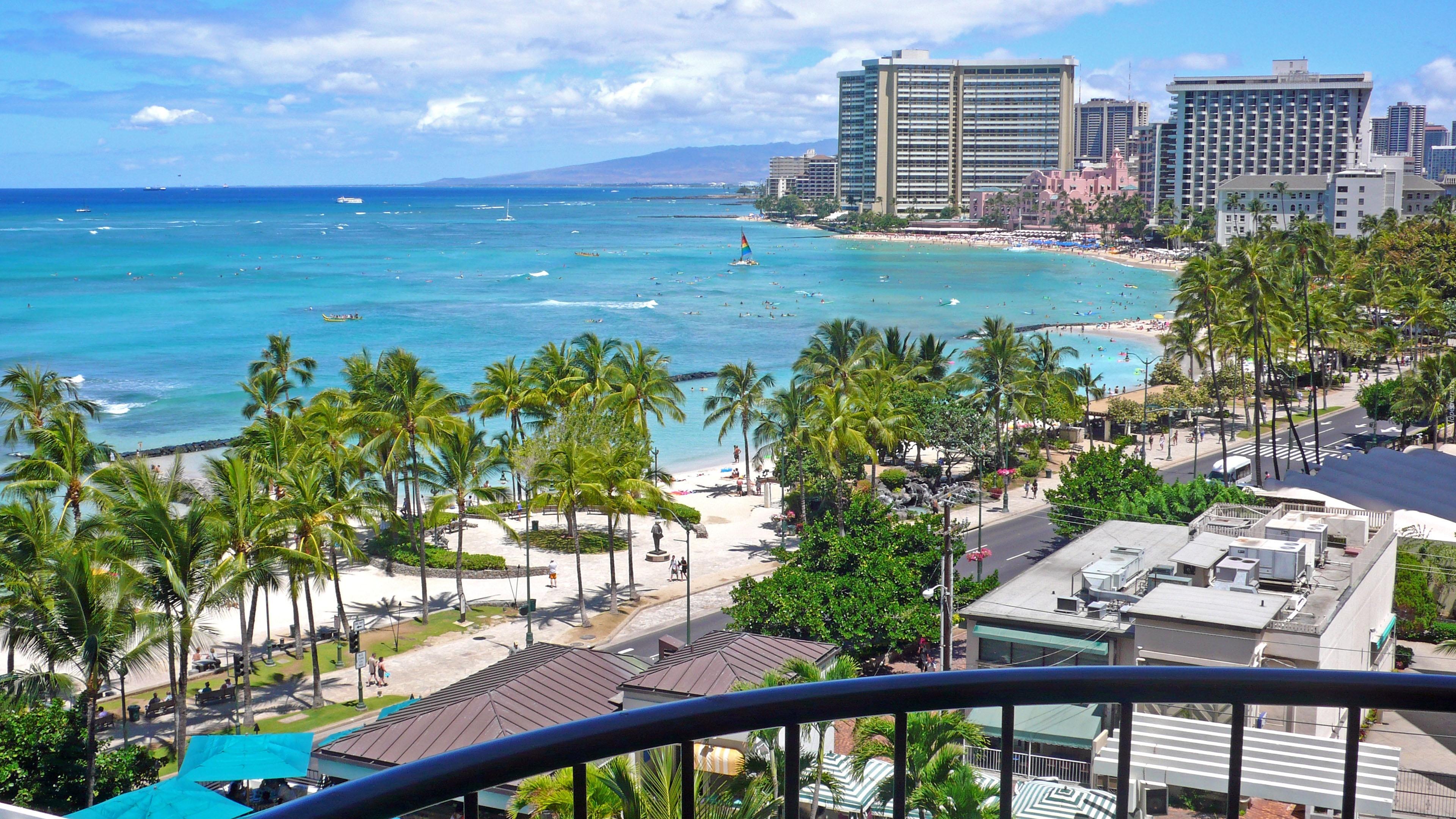 Honolulu Hawaje Palmy Zabudowania Woda