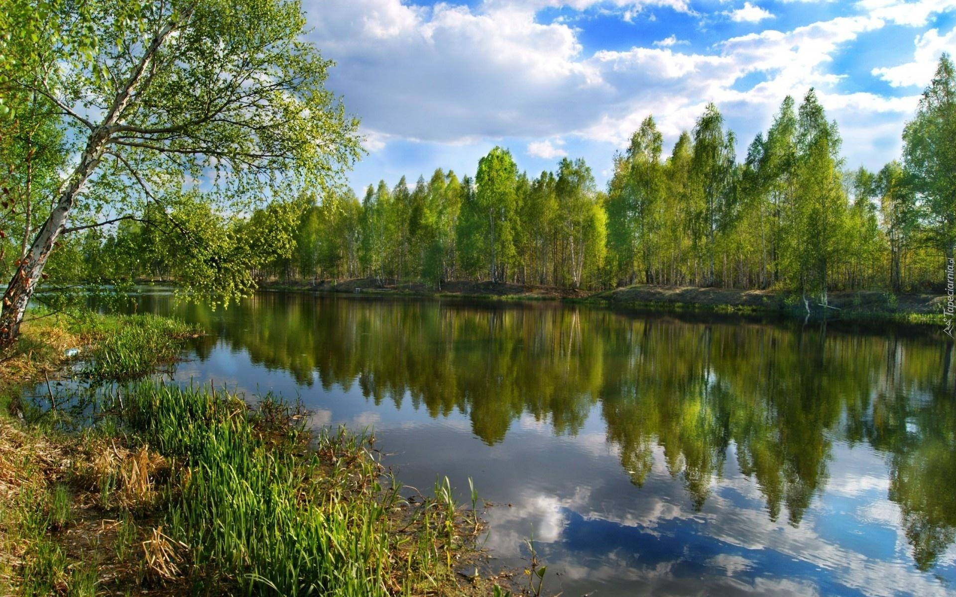 Россия природа фон