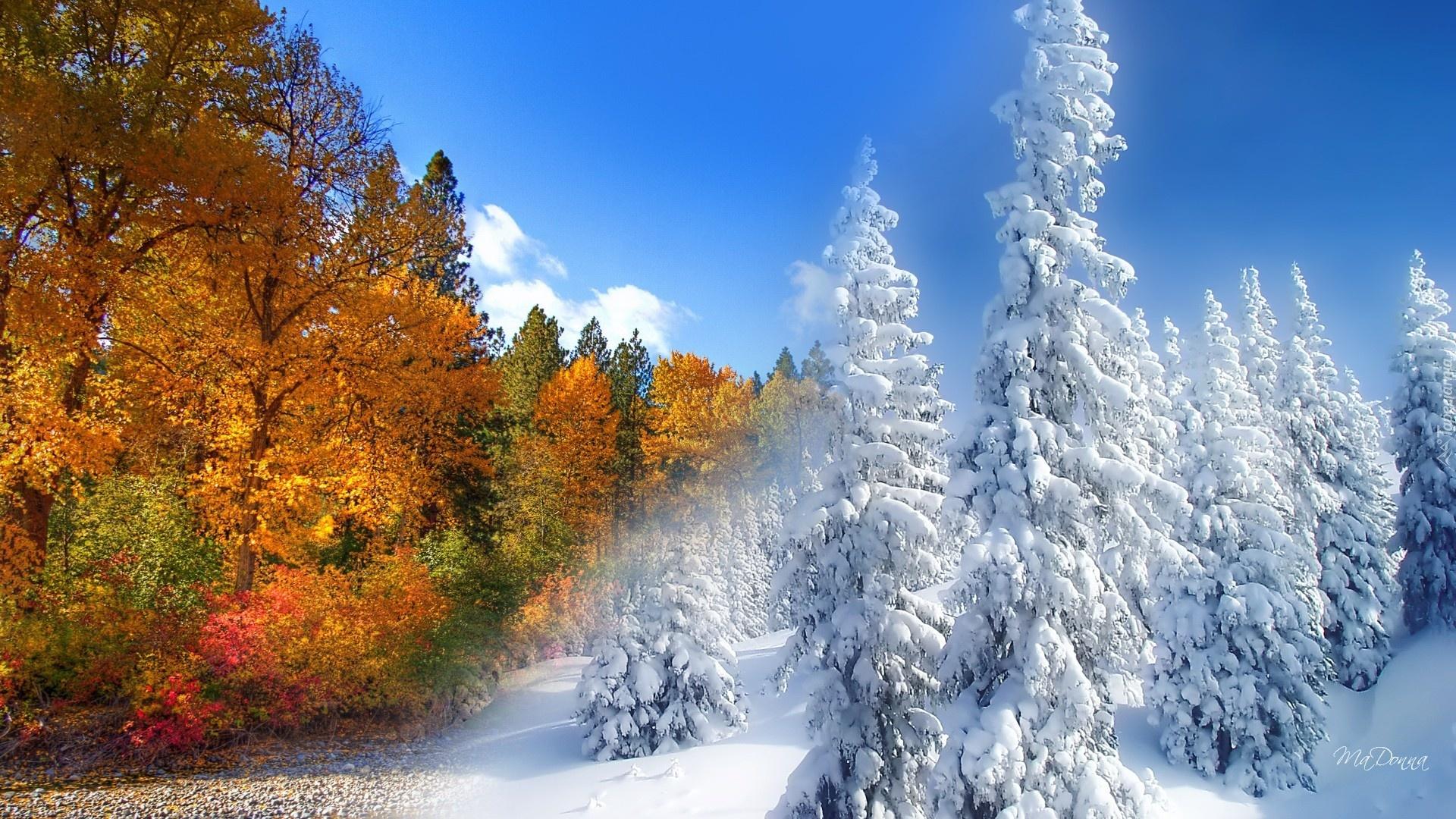 Znalezione obrazy dla zapytania Zima tapety