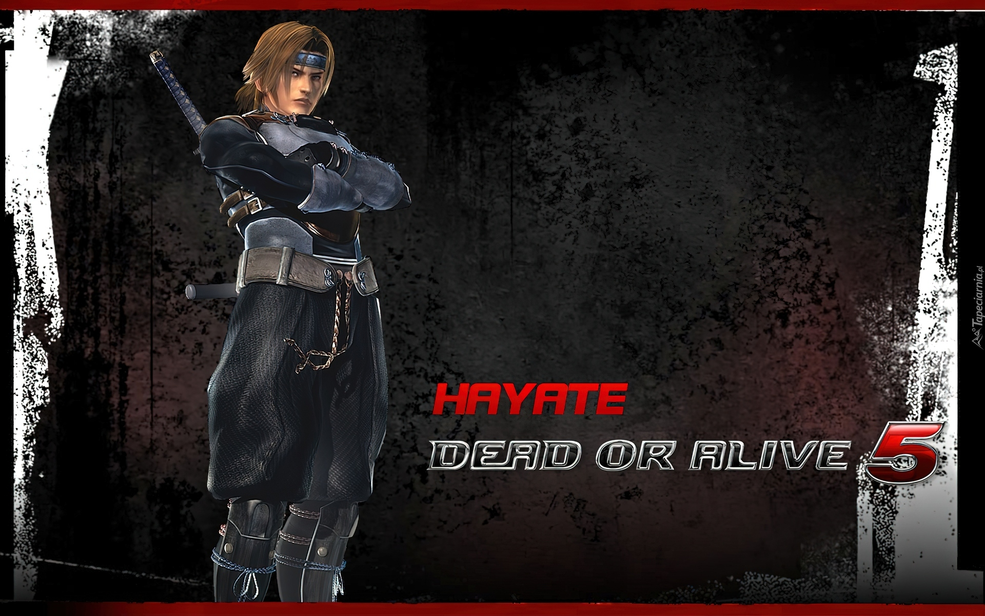 Dead Of Aive 5, HayateZ gier»Dead Or Alive»Dead Or Alive 5
