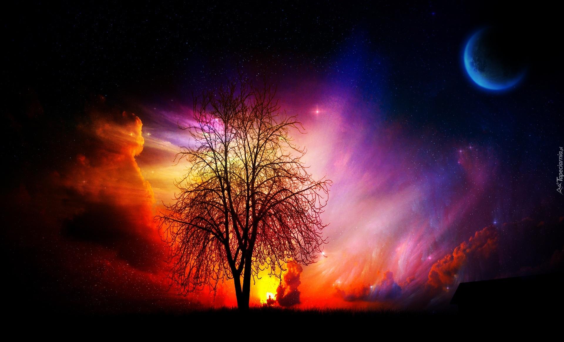 Drzewo, Kolorowe, Chmury, Planeta
