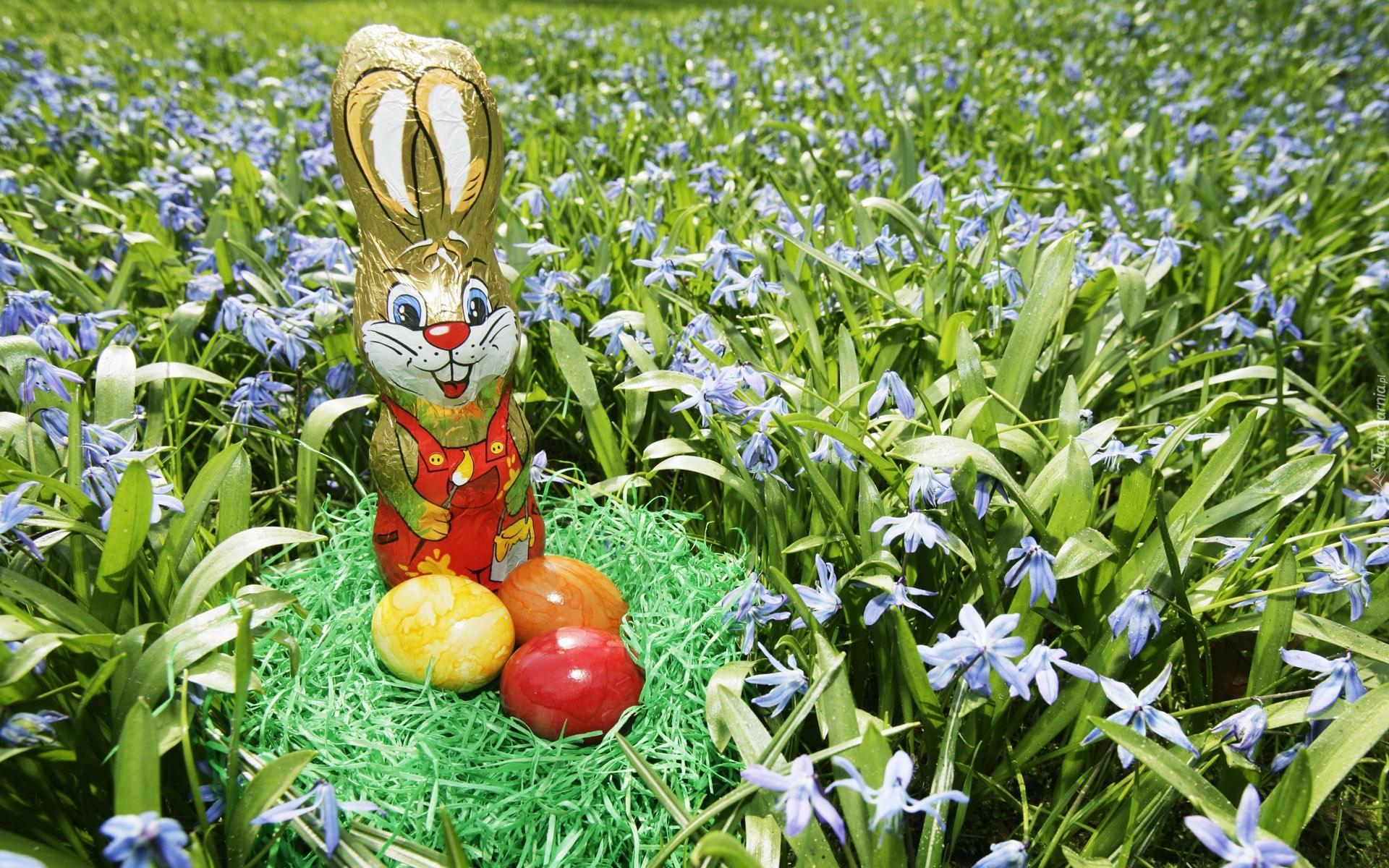 Tak długo czekałem na wiosnę ,że aż jajo zniosłem :)