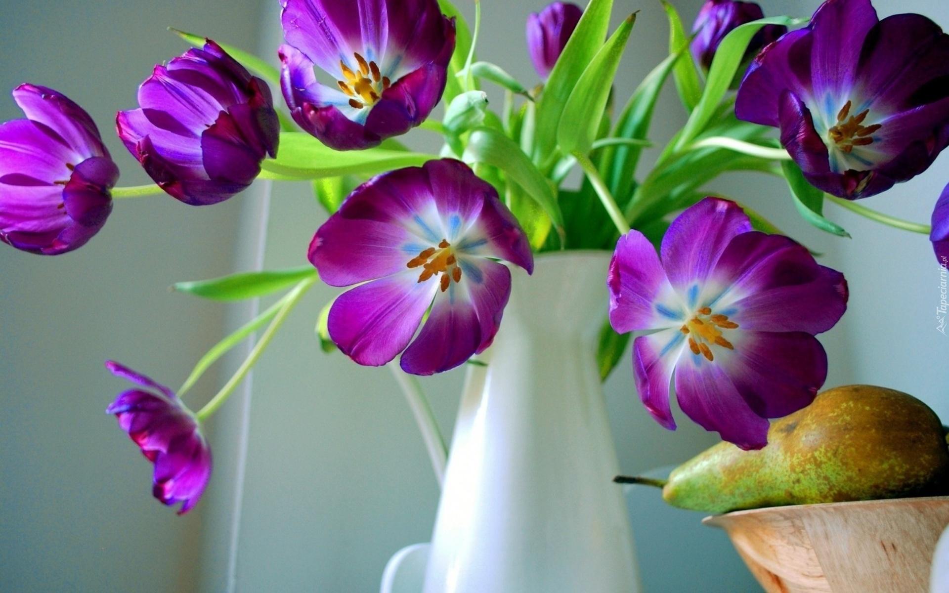 природа цветы ваза  № 1734289 бесплатно