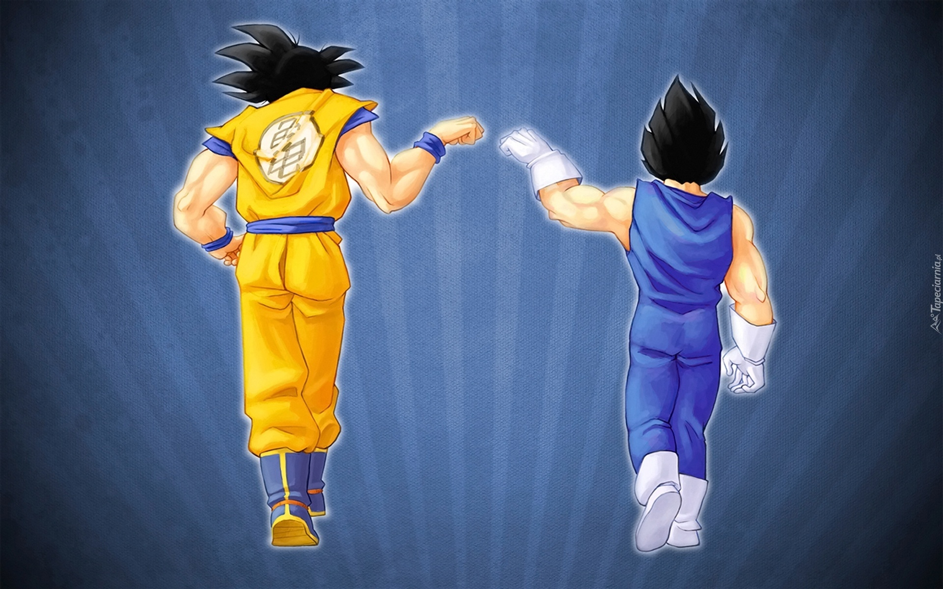 son goku vegeta dragonball - photo #6
