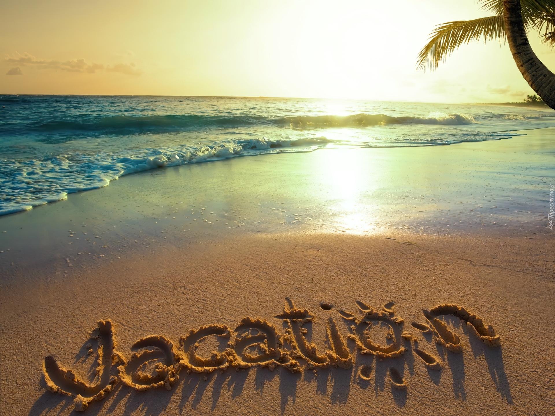 Plaża, Palmy, Morze, Fale, Promienie, Słońca, Wakacje