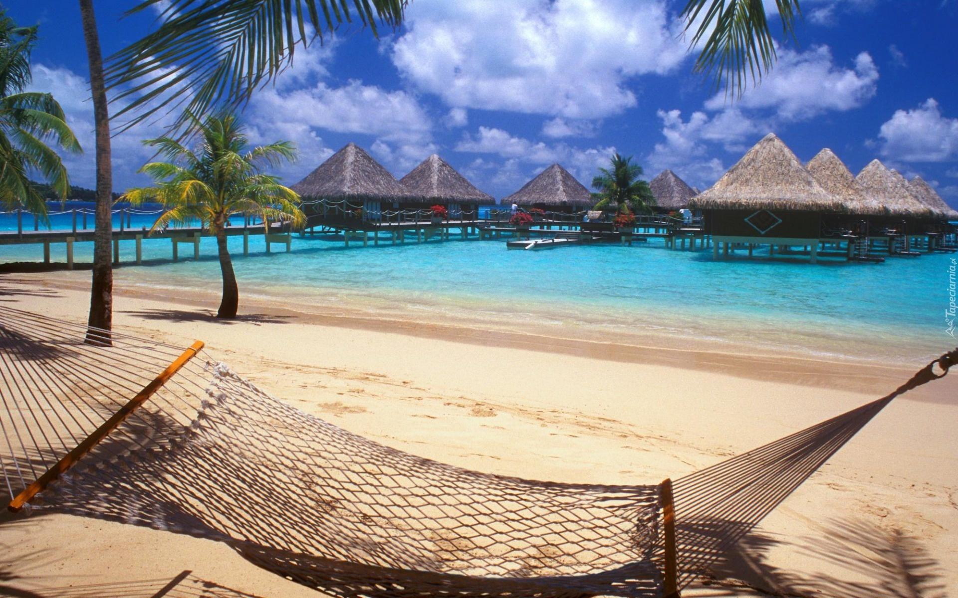 Plaża, Palmy, Hamak, Molo, Domy, Na, Palach, Bora Bora, Wyspa, Ocean