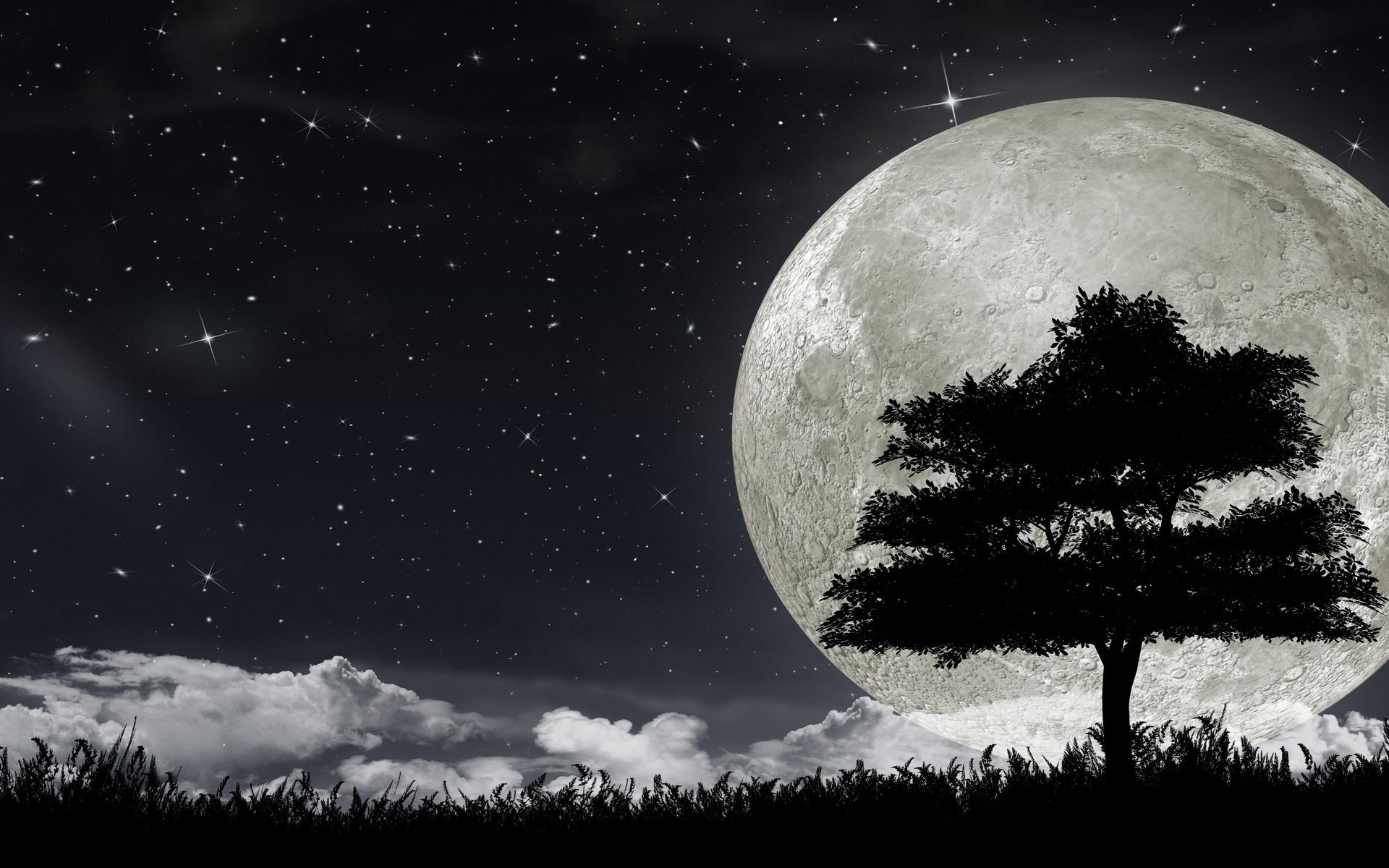 Смотреть луна штерн 8 фотография