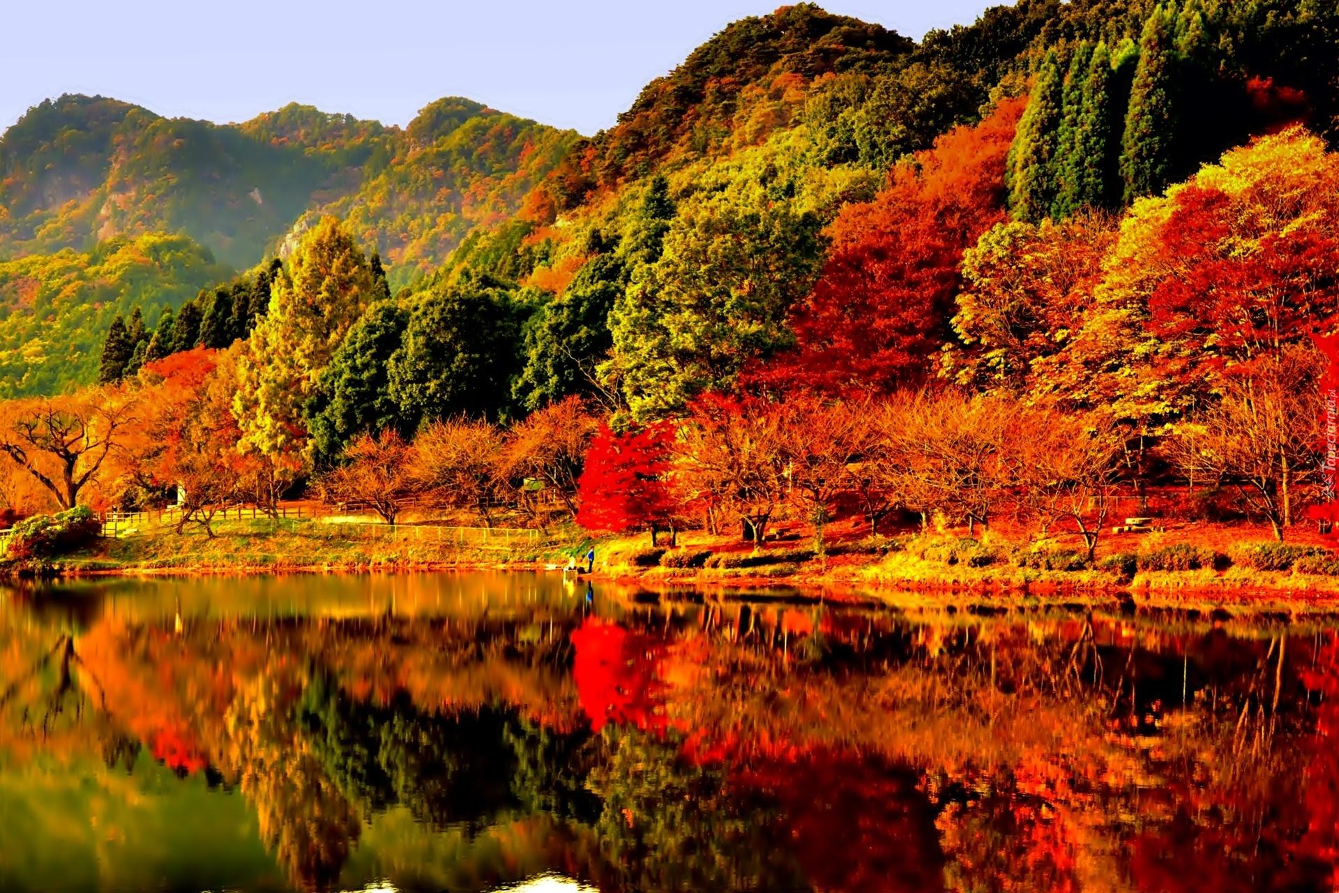 autumn leaves desktop backgrounds