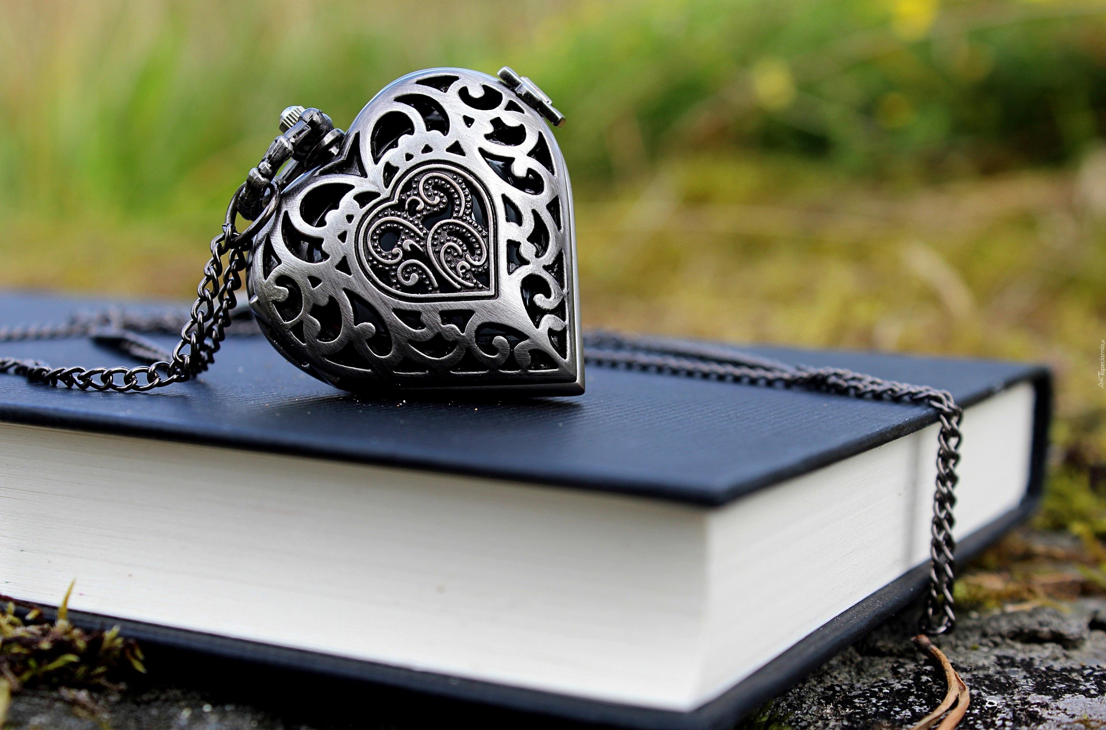 Сердце из камушка  № 1609162 загрузить