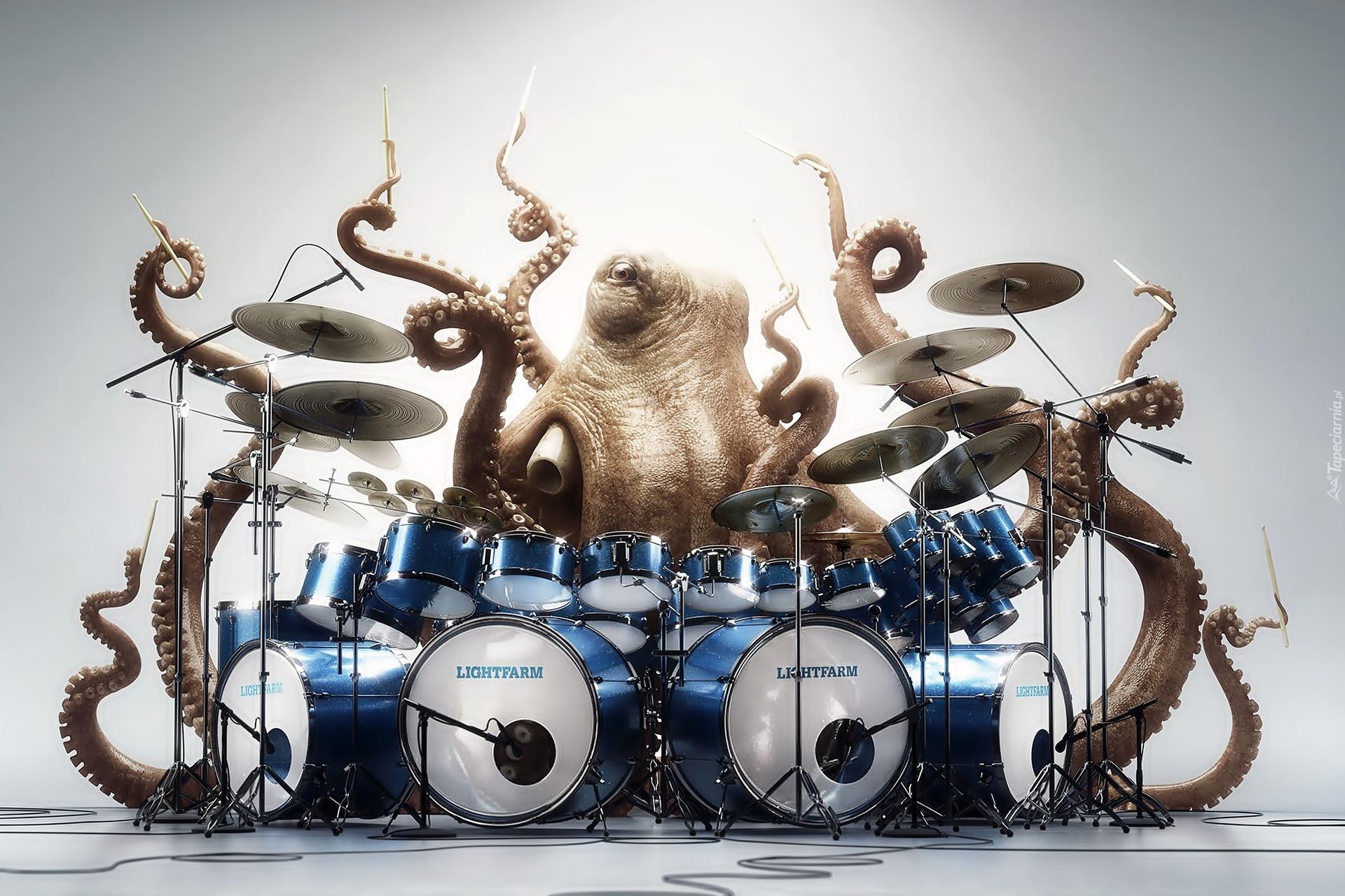 Octopus Decor Perkusja Ośmiornice