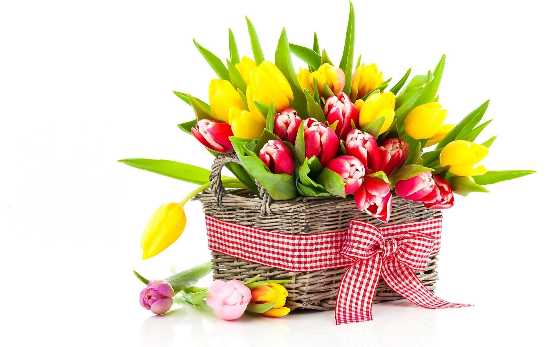 Цветы обои фото картинки на рабочий стол
