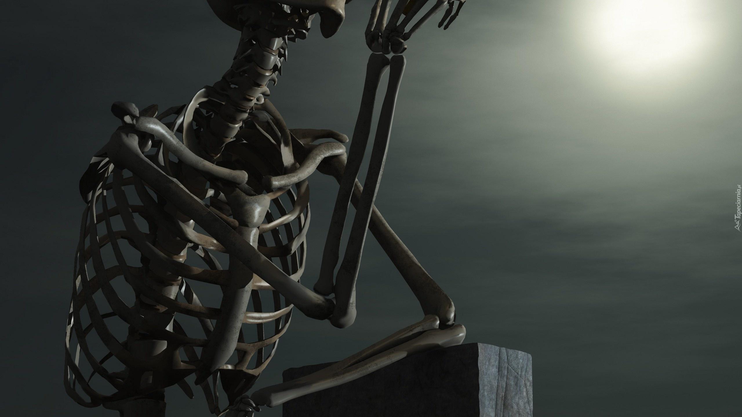 скелет  № 703192 загрузить