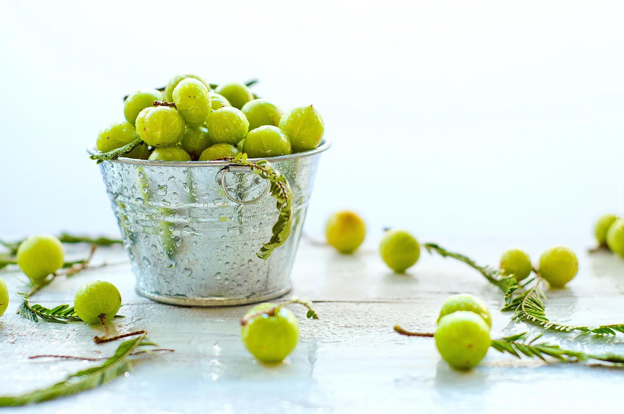 Zielone Owoce Krople Wody Metalowe Wiaderko