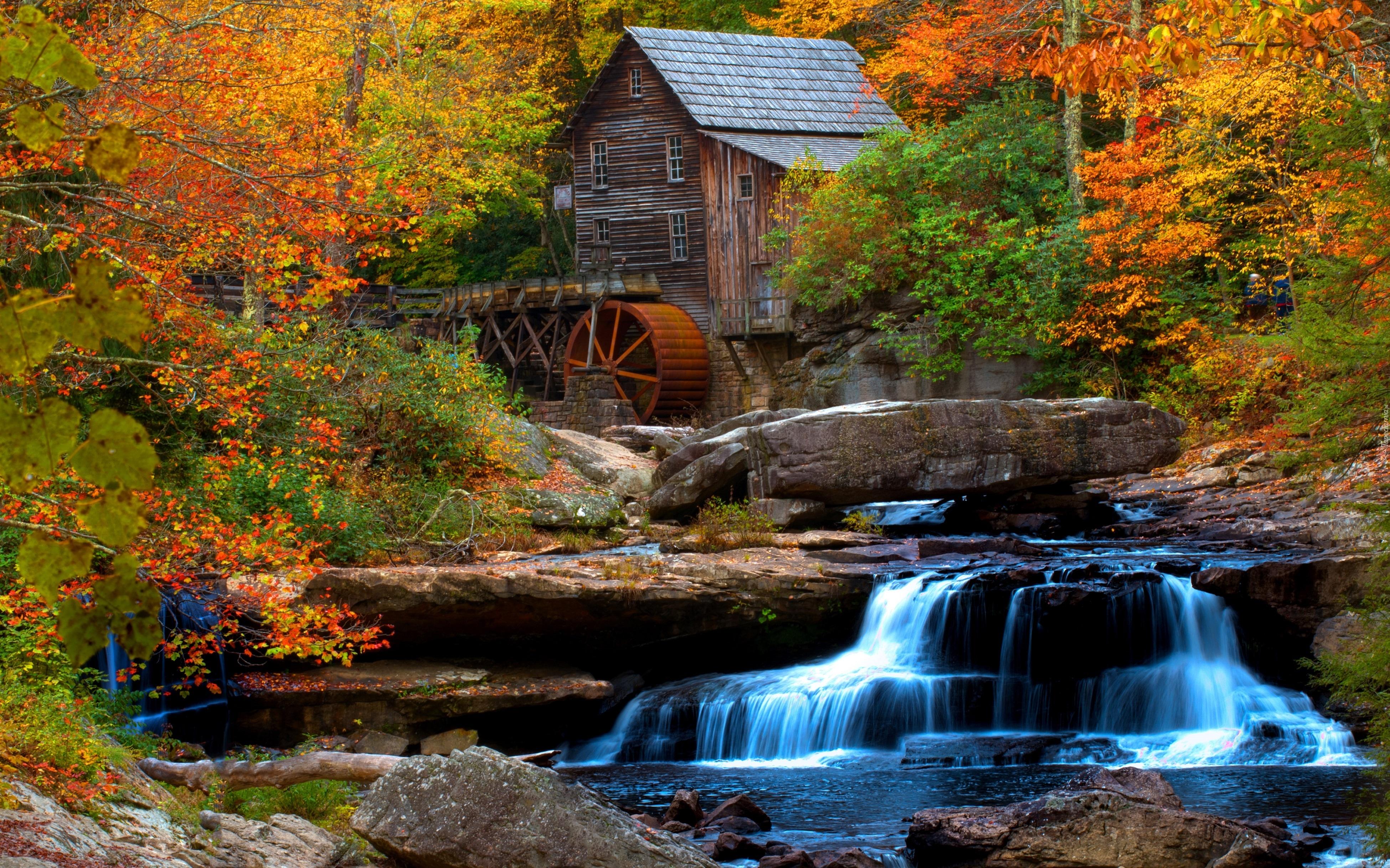 Jesień Las Młyn Wodny Wodospad