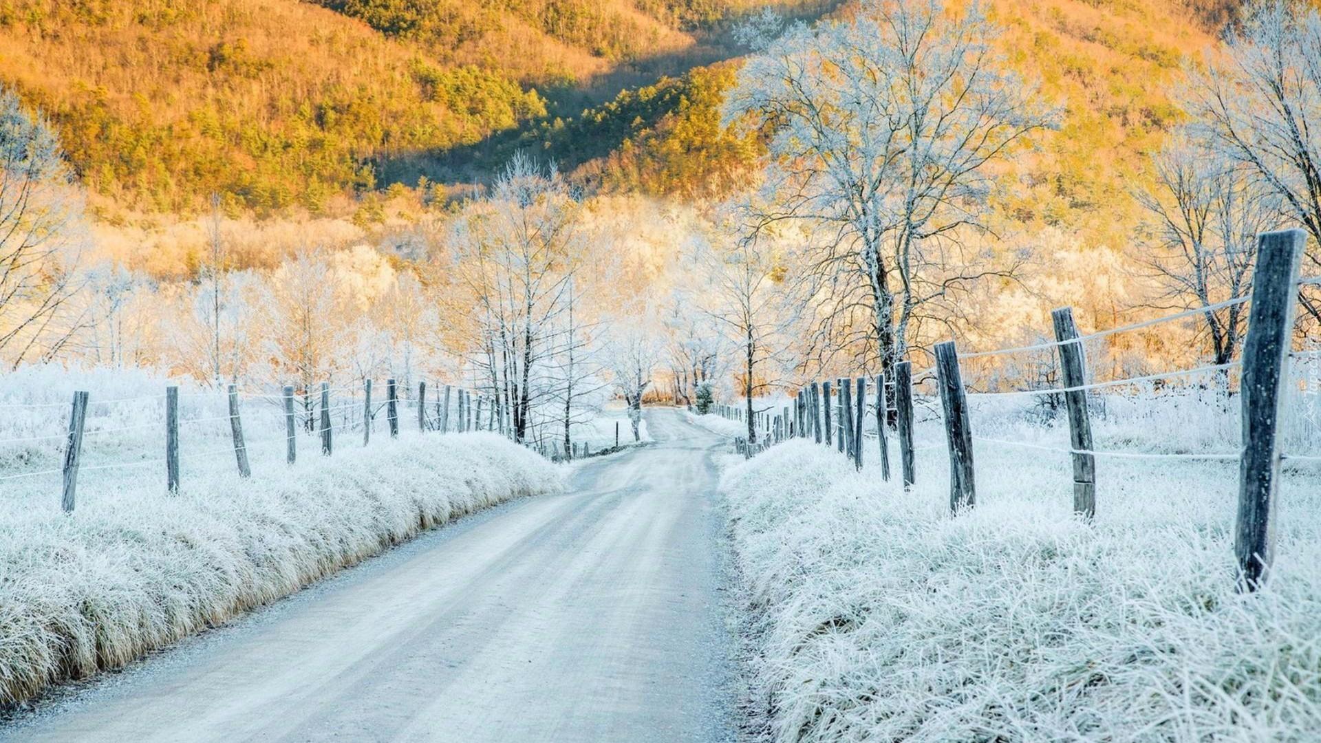 Znalezione obrazy dla zapytania Zima/jesień tapety