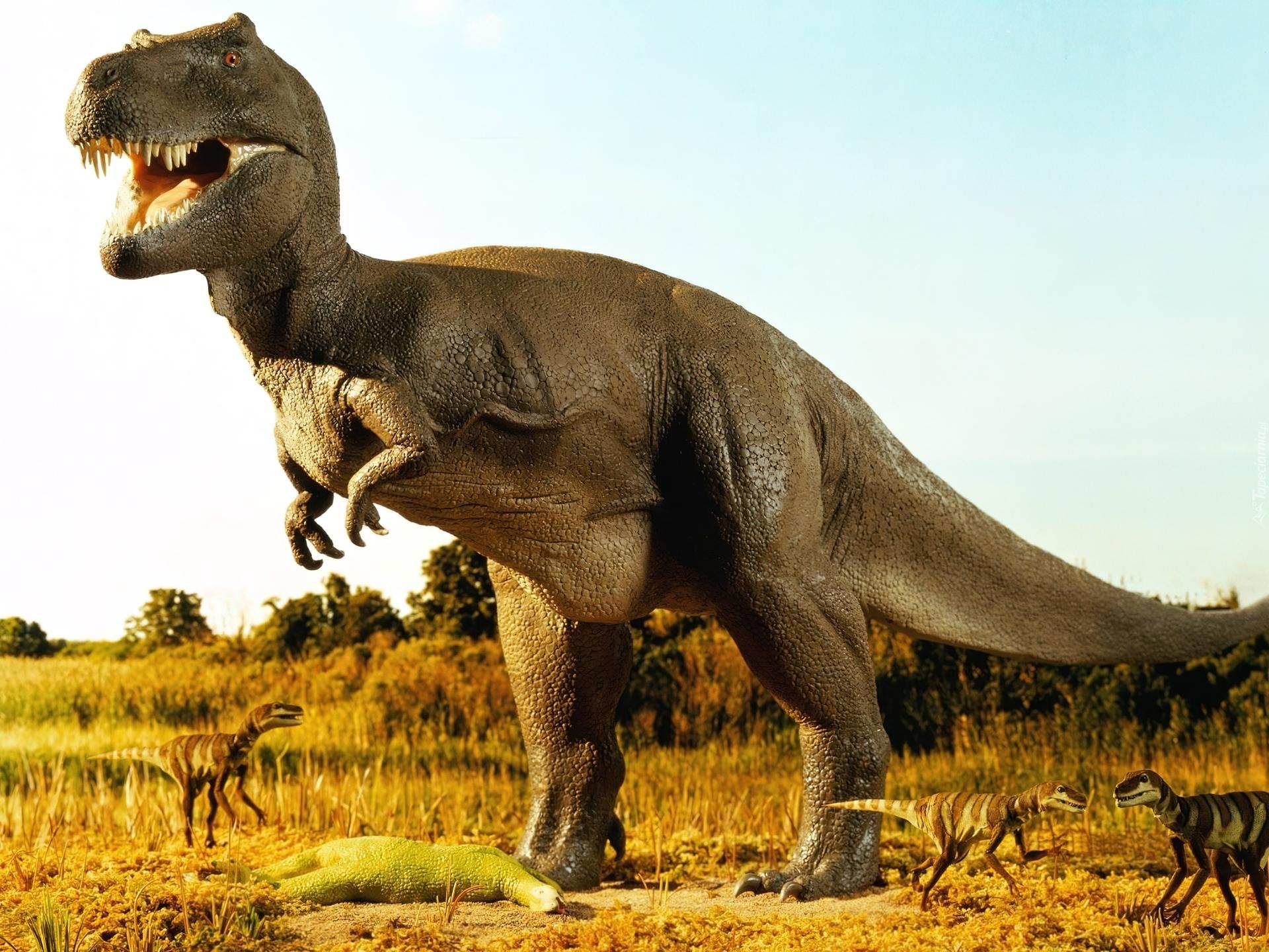 Podobno dinozaury to także kłamstwo! 40668_tyranozaur