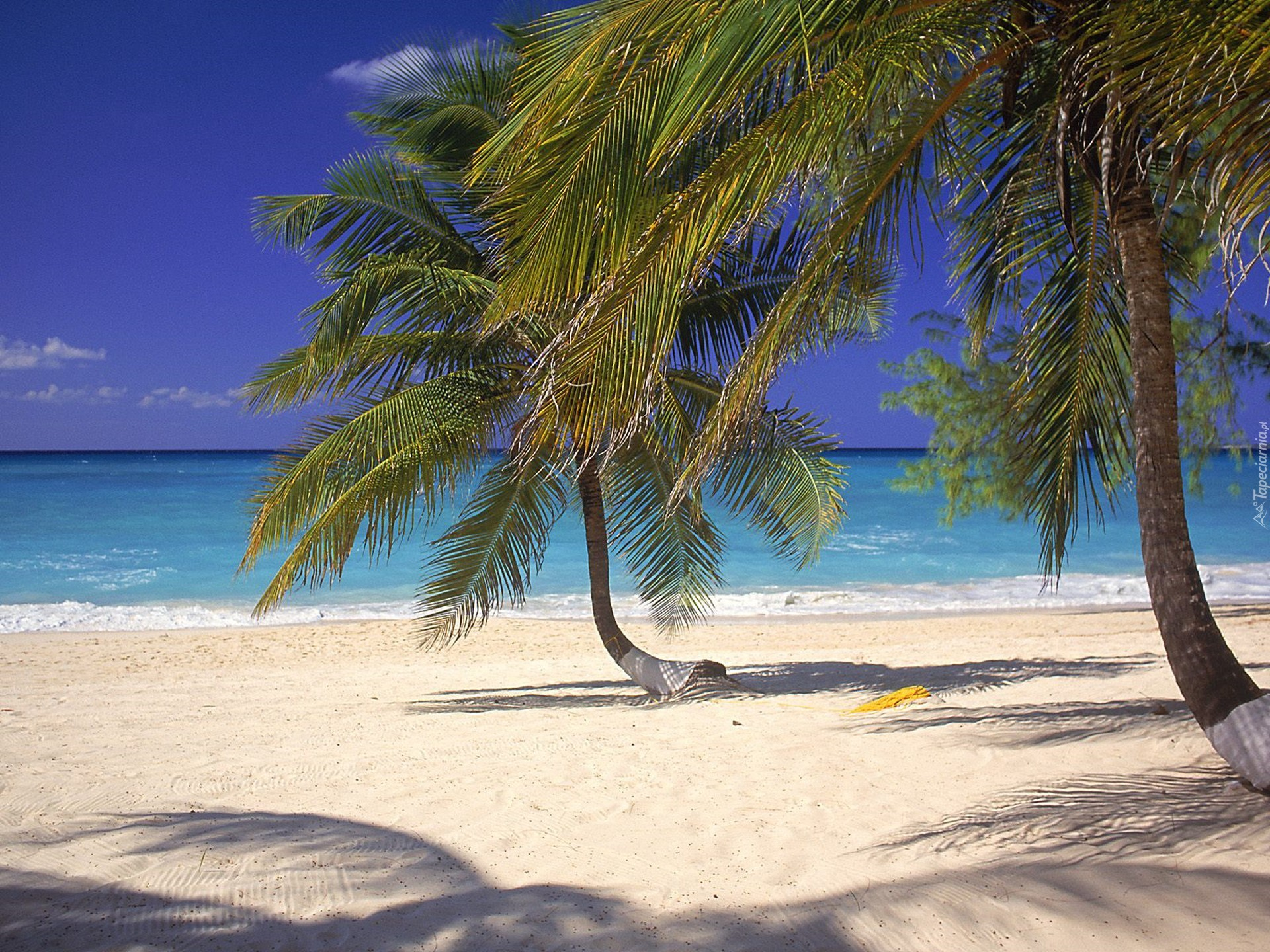 Пляж Махо (Maho Beach) находится на острове Святого...
