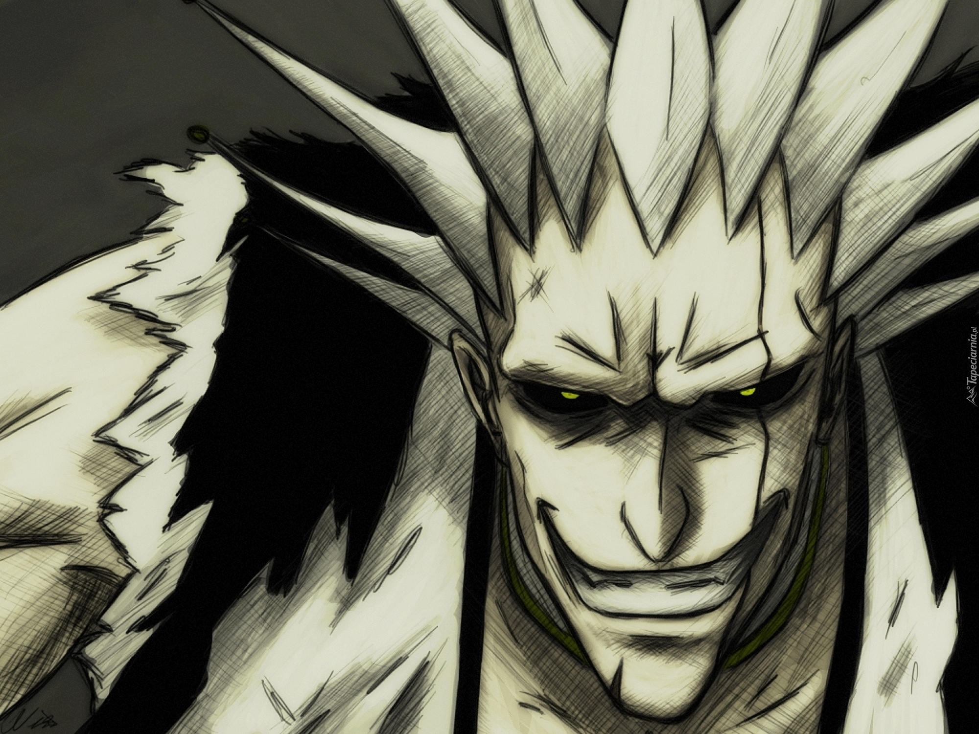 Bleach: Zaraki - Images