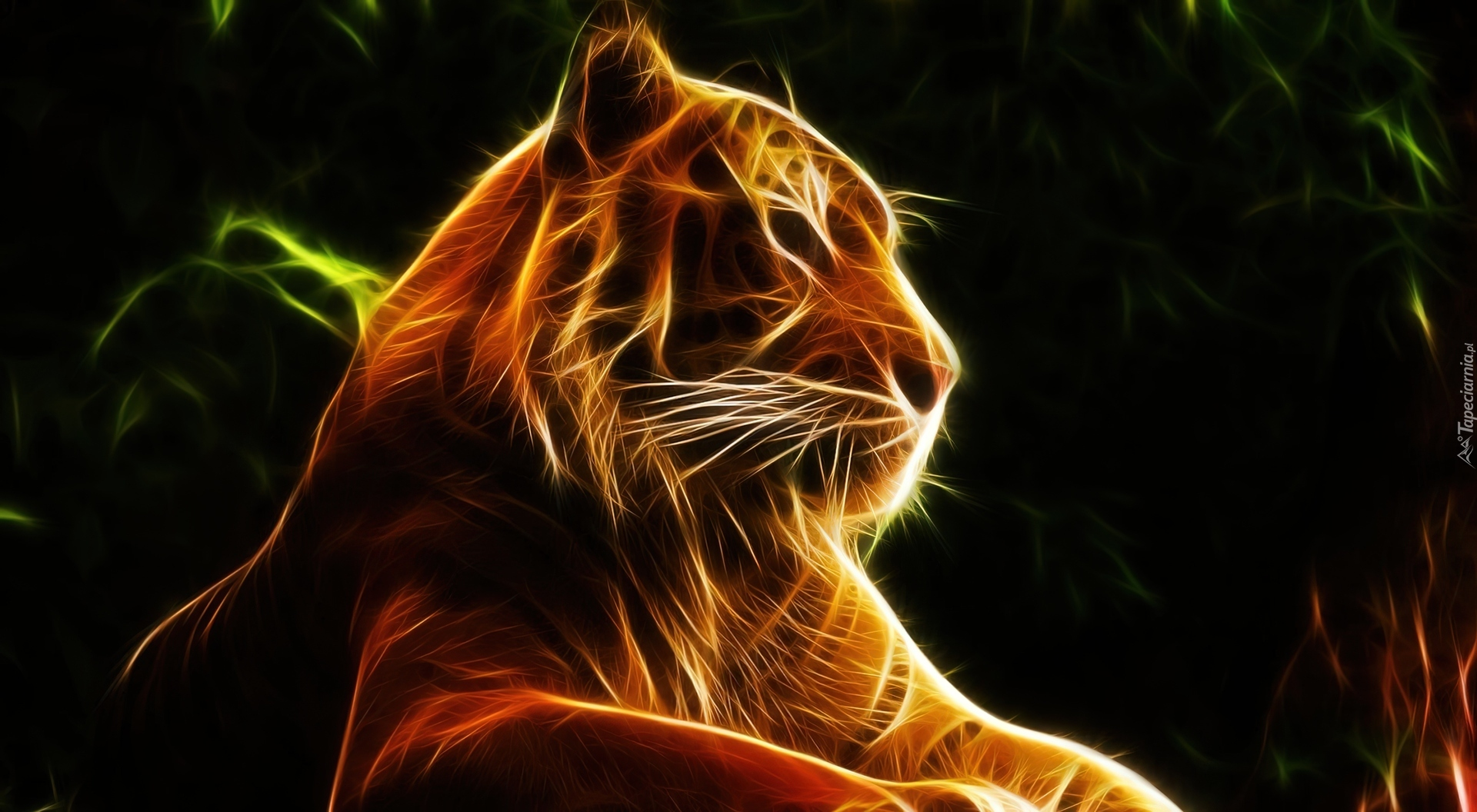 Animals Happy Lion Wallpapers Hd Desktop And Mobile: Tygrys, Grafika, Fractalius