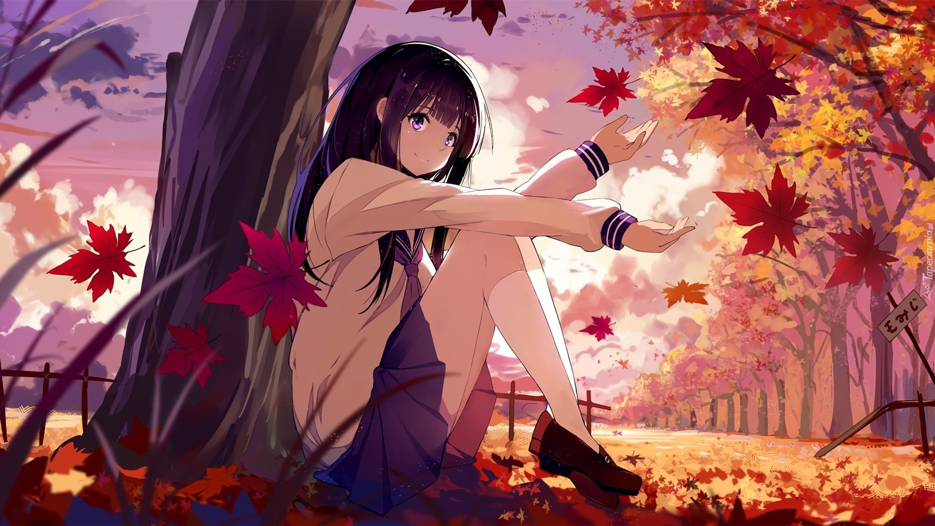 Alita Battle Angel >> Tapety : Manga Anime