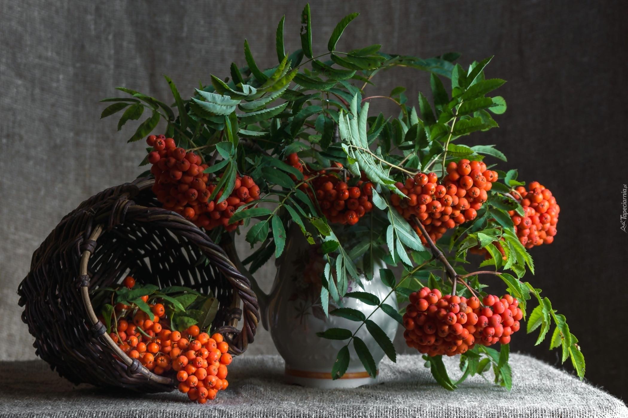 Обои с ягодами на рабочий стол