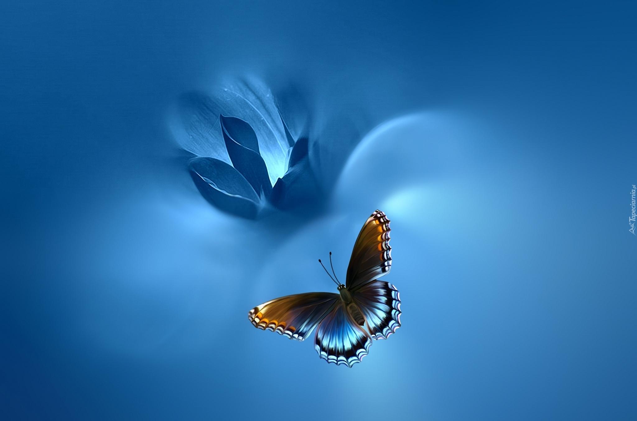 Голубая фото