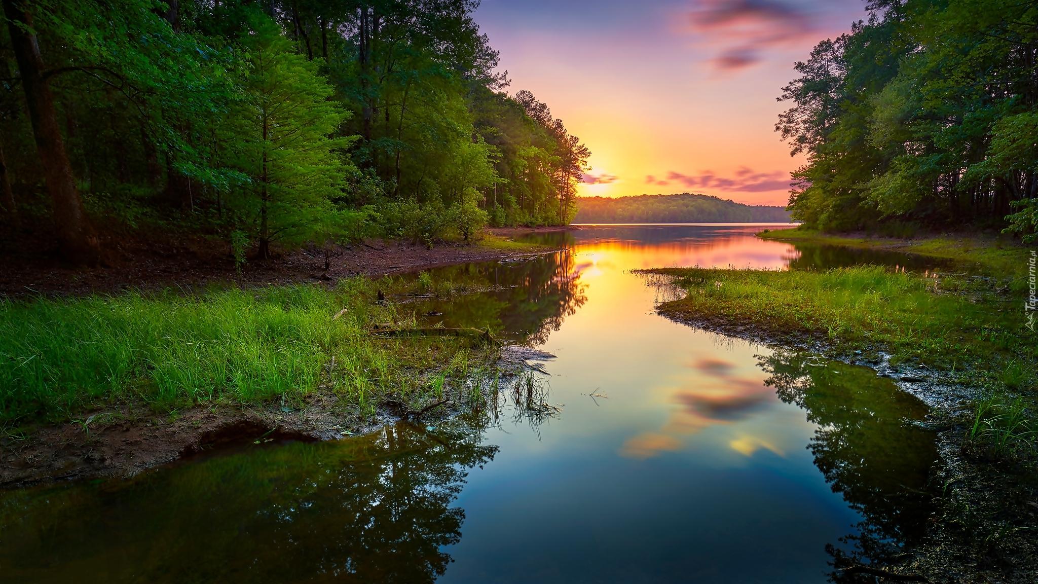 река лес  № 2789236  скачать