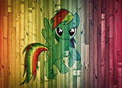 My Little Pony Przyja     To Magia  Rainbow Dash