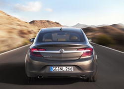 Opel Insignia, 2013, Facelifting, Tył
