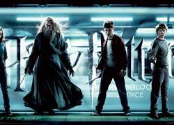 Harry, Potter, Ksi���, P�krwi