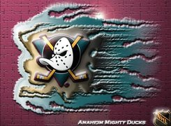 Anaheim Mighty Ducks