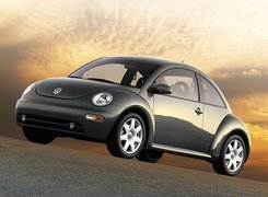New Beetle, Szary Metalik