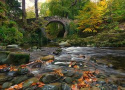 Most Foleys Bridge na rzece Shimna w Tollymore Forest Park