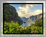Norwegia, Fiord Aurlandsfjord, Wieś Flam, Statek, Góry, Kwiaty