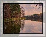 Jesień, Jezioro, Las, Drzewa, Brzozy, Odbicie