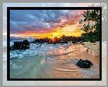 Hawaje, Morze, Fale, Palmy, Plaża, Wschód słońca