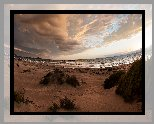 Zachód słońca, Plaża, Morze, Chmury, Piasek, Rośliny