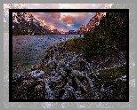 Stany Zjednoczone, Stan Montana, Park Narodowy Glacier, Jezioro St Mary Lake, Góry, Drzewa, Konar