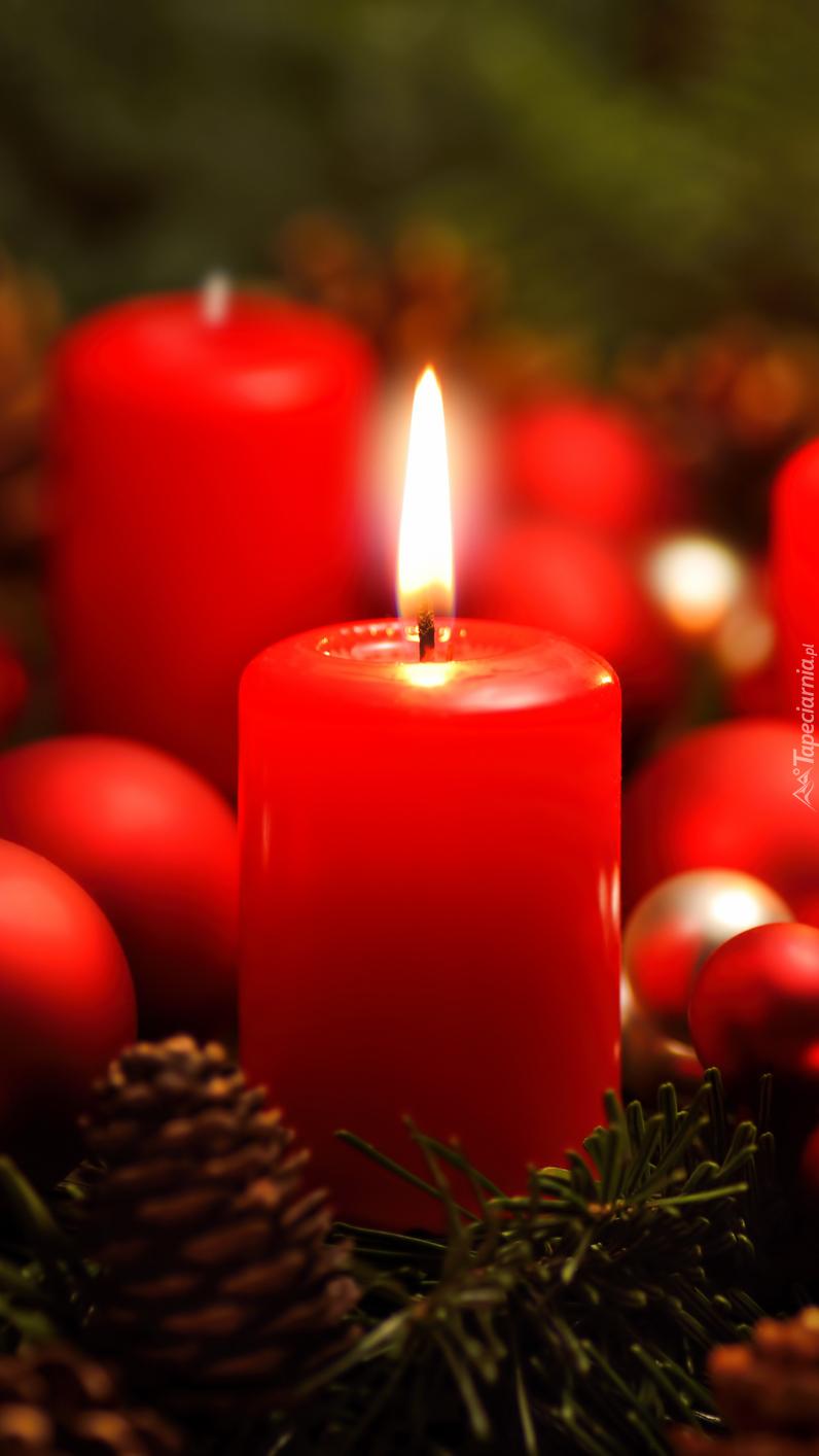 Adwentowa świeca na świerku z bombkami