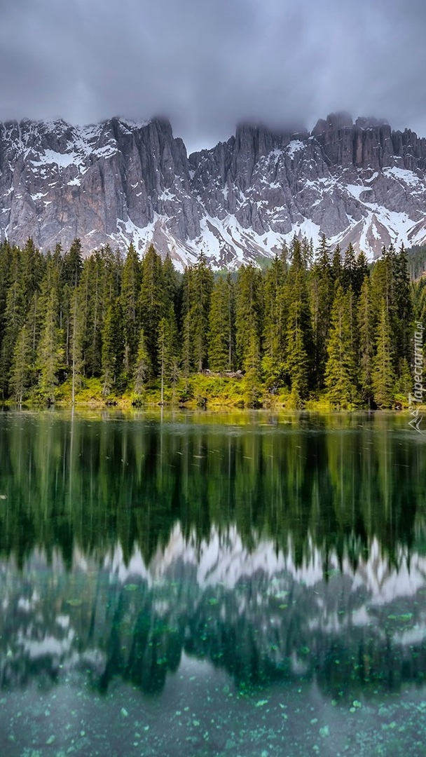 Alpy i drzewa nad jeziorem Lago di Carezza