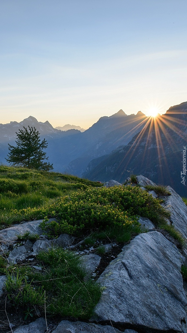 Alpy w promieniach słońca