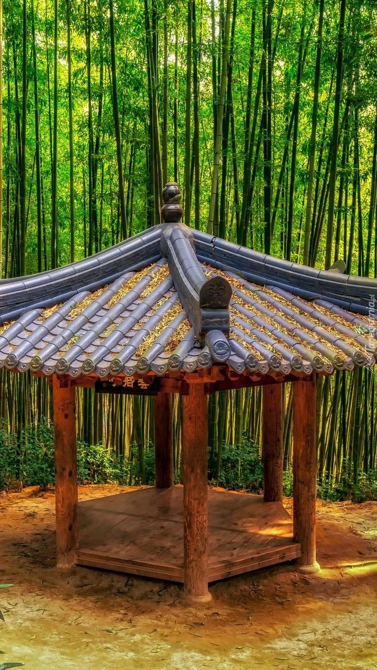 Altana w bambusowym lesie