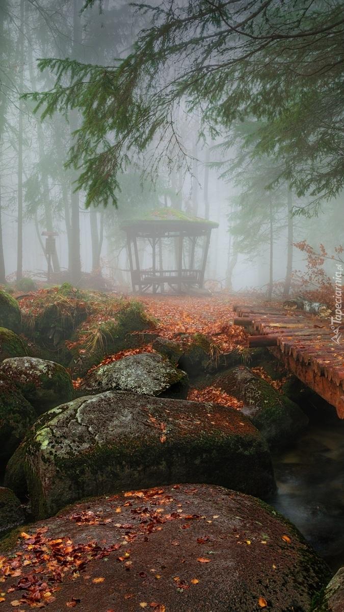 Altanka we mgle w parku