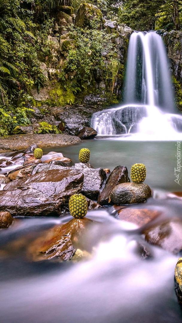 Ananasy na kamieniach obok wodospadu
