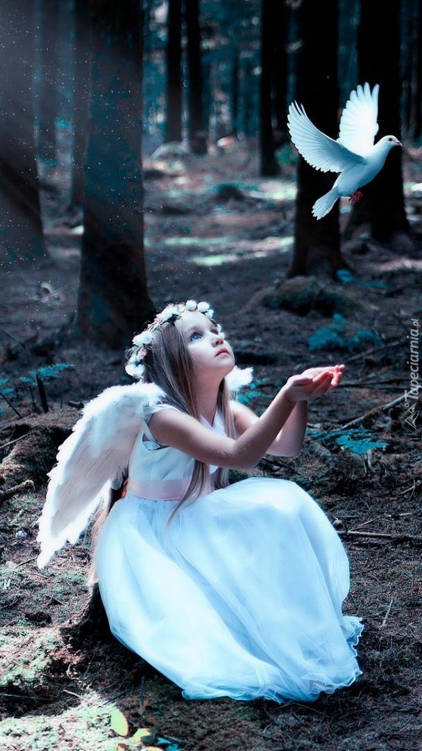 Aniołek z gołębiem w lesie
