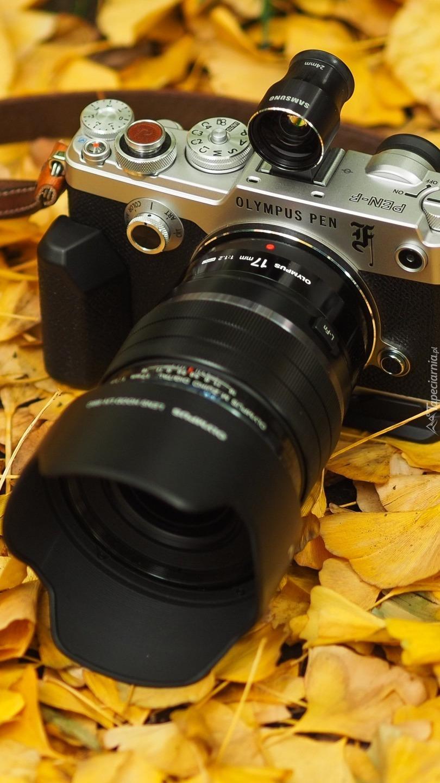 Aparat fotograficzny Olympus PEN na liściach