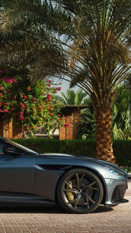Aston Martin DBS Superleggera pod palmą